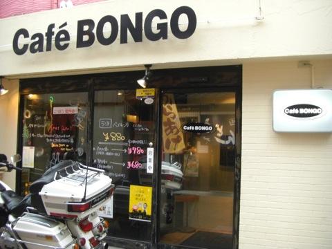 bongo-1.jpg
